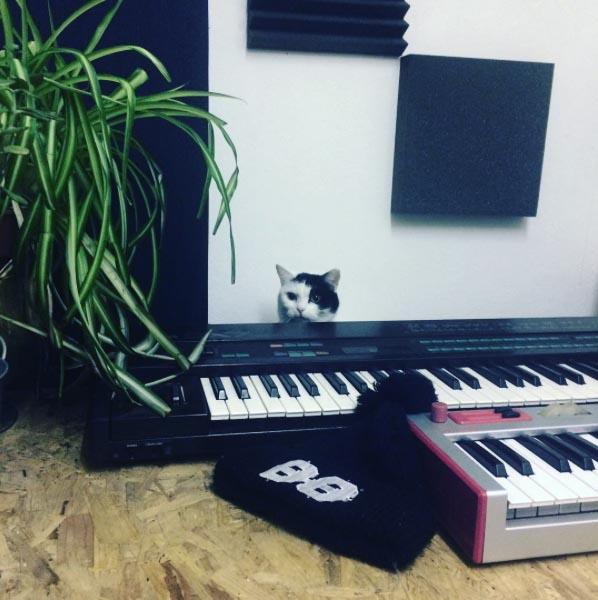 natty, studio